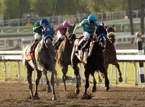 Speed and Class Horse Racing Handicapping